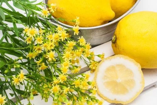 美容におすすめの成分 ビタミンC
